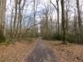 Chemin de traverse