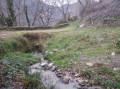 chemin enherbé et son vieux pont