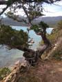 Le Taravo au départ de Cassone via Porto Pollo et Cognoccolli Monticchi
