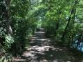 Forêt du Fort Ulrich