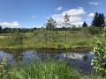 Sur le plateau des mille étangs