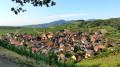 La ronde des grands crus de l'Alsace Moyenne